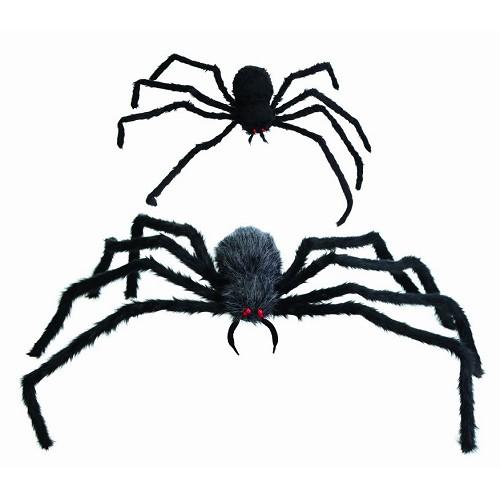Aranha-peluda gigante
