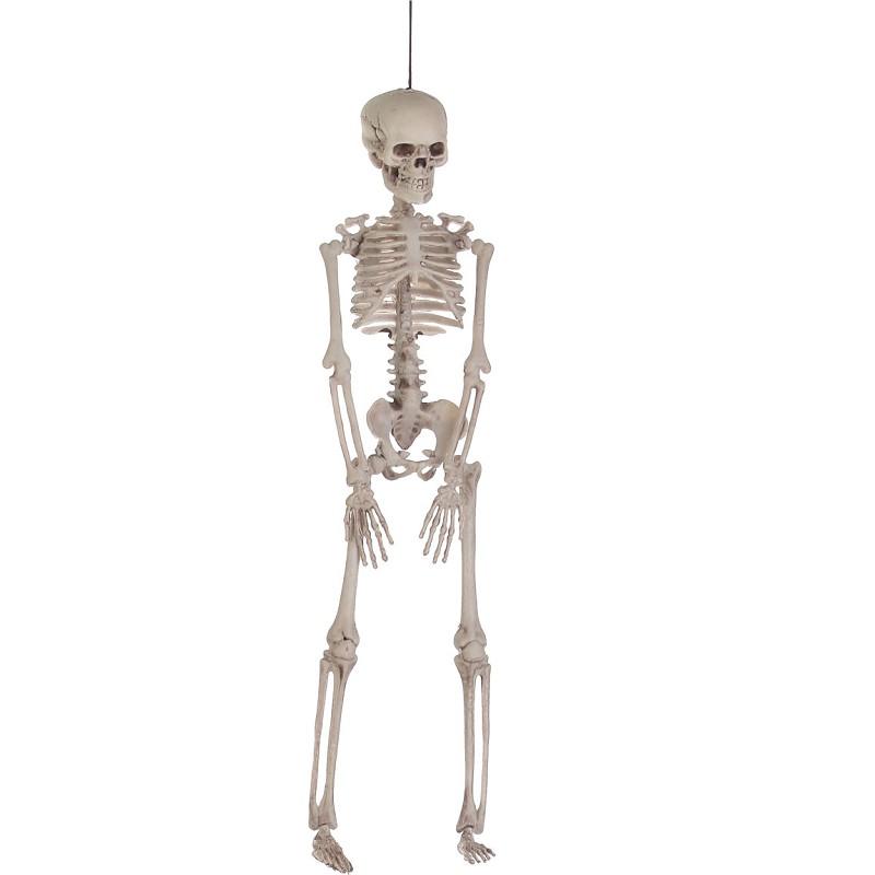 Desconto Esqueleto De Plástico Do Dia Das Bruxas | 2020