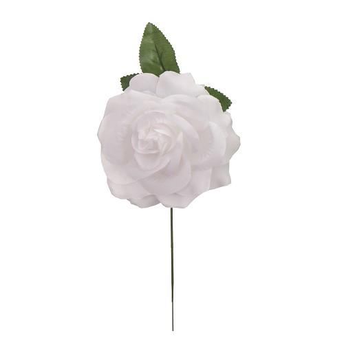 Rosa Blanca 15 cm