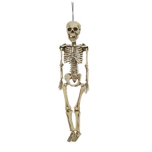 crânio de 40 cm.